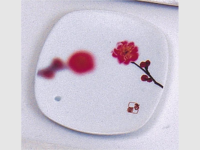 Halter Pflaumenblüte
